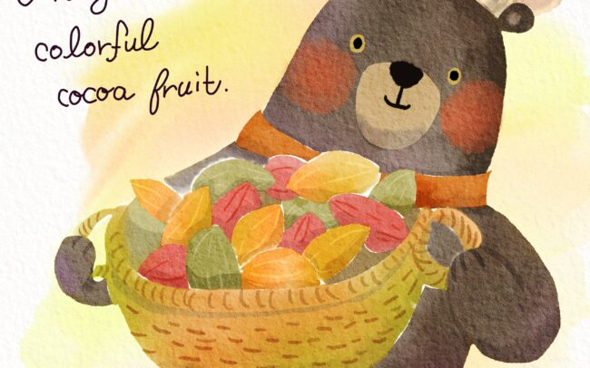 Bear Chef Get Some Cacao Fruit